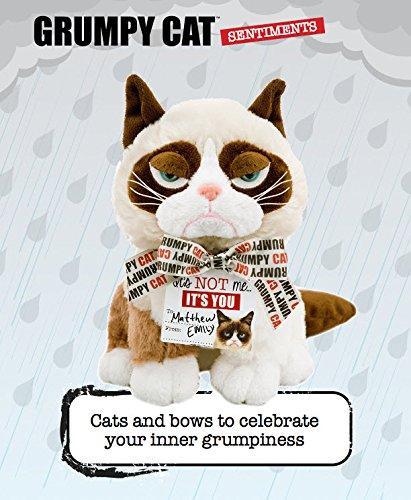 Amazon Grumpy Cat Sentiments Happy Birthday Bow Card