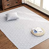 GIY Solid Living Room Area Rug Soft Rectangular Travel Carpets Children Crawling Bedroom Rug Non-Slip Washable Mats Home Decor Outdoor Indoor Runners Gray/White 2' X 4'