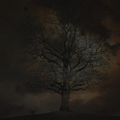 Quality Prints - Laminated 24x24 Vibrant Durable Photo Poster - Spooky Halloween Scary Mystery Dark Night Evil Ghost Fantasy Cemetery Creepy Tree Black Silhouette Nature Horror
