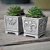 Miniature Fairy Garden Miniature Stone Urns, Set of 2 Review