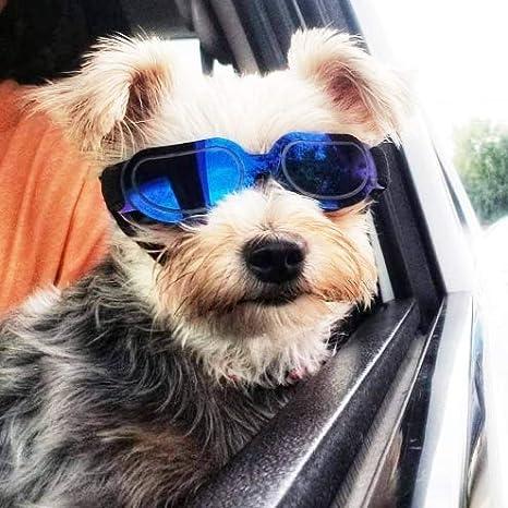 Homesupplier Gafas de sol para perros y mascotas ...
