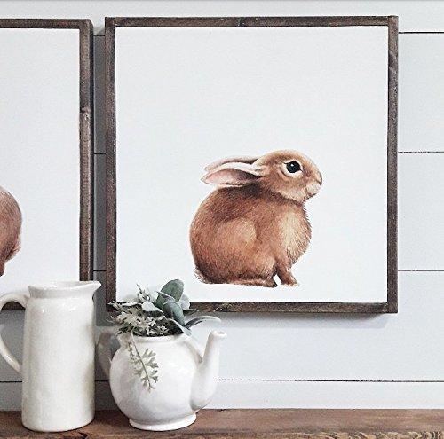 amazon com easter bunny decor peter rabbit nursery music notes