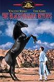 DVD : The Black Stallion Returns