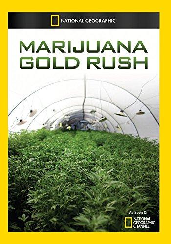Marijuana Gold Rush (Gold Marihuana)