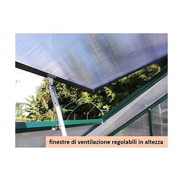 Serra Gran Torino in Alluminio e policarbonato alveolare da 6mm. Base Inclusa. Dimensioni 250 x 430 cm 2 spesavip