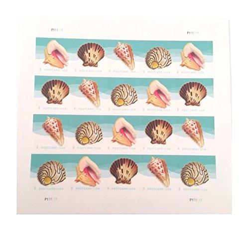 Seashells Postcard Stamp USPS Forever Stamps, Sheet of 20 - US Postage Card Stamps (Sheet of 20 Stamps)