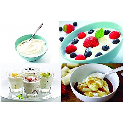 Yogurtera ecológica, no necesita electricidad - permite hacer 1 litro de yogur: Amazon.es: Hogar