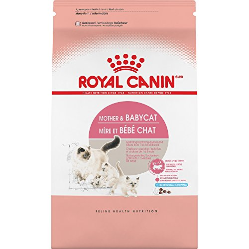 ROYAL-CANIN-FELINE-HEALTH-NUTRITION-Mother-Babycat-dry-cat-food-35-Pound