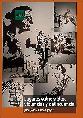 Lugares Vulnerables, Violencias Y Delincuencia por Juan José Villalón Ogáyar epub