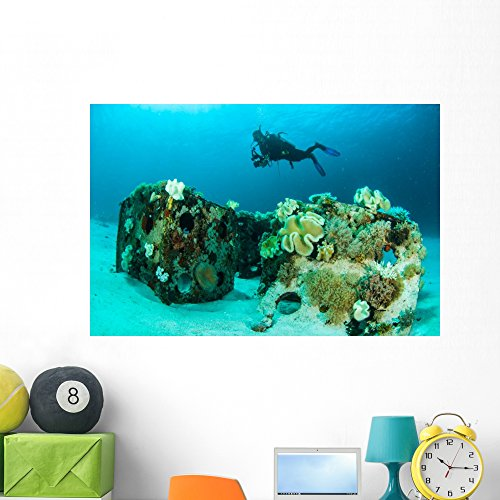 (Wallmonkeys Scuba Diving Diver Shipwreck Wall Mural Peel and Stick Graphic (48 in W x 32 in H) WM367732)