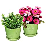 Set of 2 Decorative Green Daisy Burst Design Ceramic Plant Flower Planter Pots w/ Attached Saucers For Sale