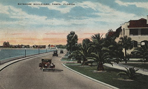 Tampa, Florida - Bayshore Blvd (12x18 Art Print, Wall Decor Travel - Lantern Wall Bayshore