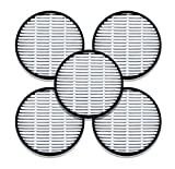 FitAir H13 HEPA Filter (5 Pack)