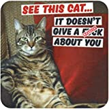 See This Cat - It Doesnt Give A Fck About You Coaster by Dean Morris Cards