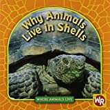 Why Animals Live in Shells (Where Animals Live)