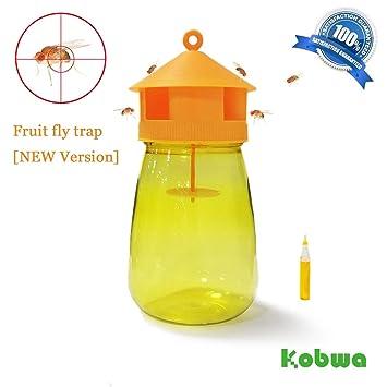 KOBWA trampa para moscas de frutas, dispositivo portátil ...