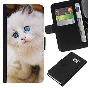 Ragdoll American Curl Longhair Angora - la tarjeta de Crédito Slots PU Funda de cuero Monedero caso cubierta de piel Samsung Galaxy S6 EDGE