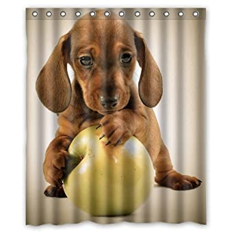 Dachshund Puppy Custom Shower Curtain 60u0027(w)x72u0027(h)