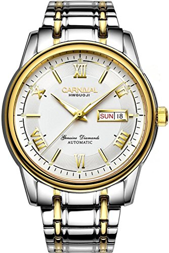 Jewel Movement (Carnival Men's Watch Automatic Mechanical Business Watch 25 Jewels Movement Days Week Steel Band Watches (Gold White))