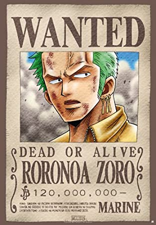 One Piece Póster/cartel: Wanted Zorro/Zoro (98 x 68 cm ...