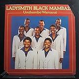 Umthombo Wamanzi [Vinyl]