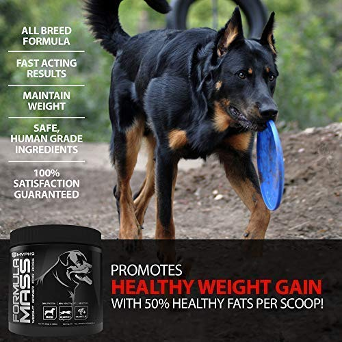 Buy MVP K9 Supplements Formula Mass Weight Gainer for Dogs