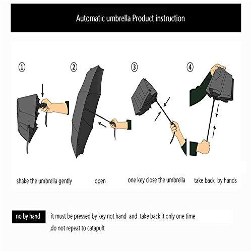 LybCvad Regenschirm Gradient Mädchen weibliche Regenschirm weibliche versenkbare Gradienten einzigen männlichen Ebene halbautomatische Regenschirm Abdeckung, zehn Wein (Regenschirm) (105cm)