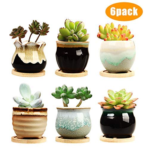 2.5 Inch Ceramic Succulent Planter Pot With Drainage,Planting Pot Flower Pots,Small Planter Pots For Garden,Cactu,Succulent Pot,Mini Flower Pots With Holes,Ceramic Flowing Glaze Base Serial Set With B