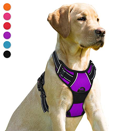 BARKBAY No Pull Dog Harness Front Clip Heavy Duty Reflective Easy Control Handle for Small Medium Large Dogs(Purple,S)