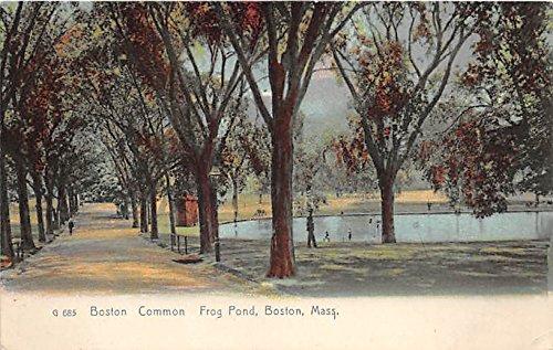 (Boston Common & Frog Pond Boston Massachusetts Postcard)