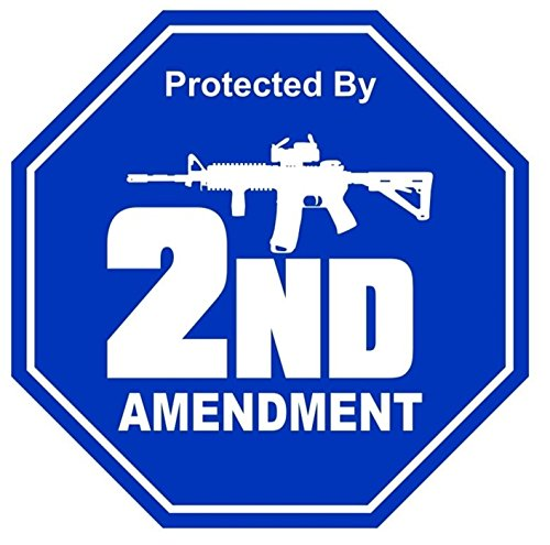 1 Set Effective Unique Protected by 2nd Amendment AR 15 Gun Window Stickers Laptop Luggage Patches Wall Art Graphics Funny Business Security Sign Vinyl Sticker Size 2