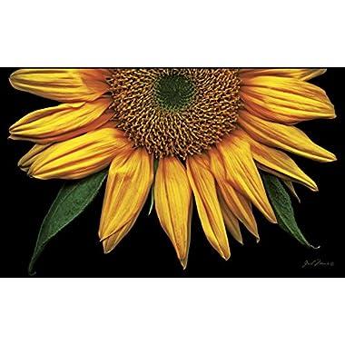 Toland Home Garden Sunflowers on Black 18 x 30-Inch Decorative USA-Produced Standard Indoor-Outdoor Designer Mat 800037
