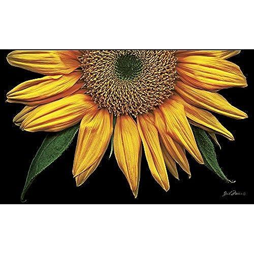 Toland Home Garden Sunflowers On Black 18 X 30 Inch Decorative Floor Mat  Sunflower Portrait Flower Doormat