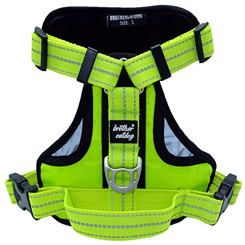 xl dog harness bulldog - 5