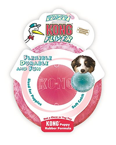 KONG Puppy Flyer Dog Toy, Colors May