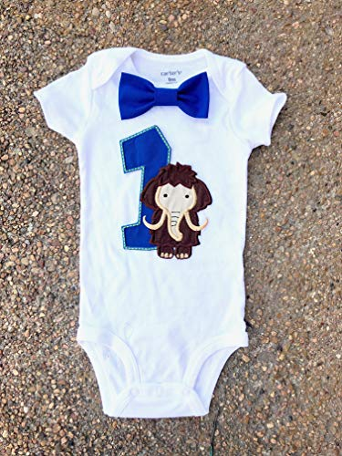 Boy first birthday woolly mammoth First birthday boy cake smash one year outfit Balloon elephant birthday outfit birthday shirt family shirt