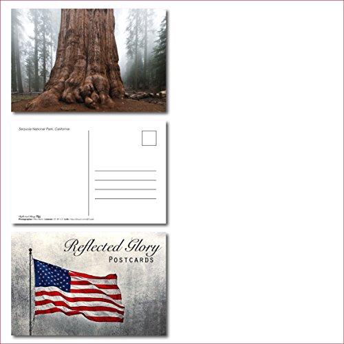 US National Parks postcards pack - Set of 25 individual postcards featuring America's national parks and natural landmarks Photo #2
