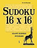 Sudoku 16 X 16: Giant Sudoku Puzzles 1