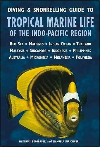 Ebooks suchen und herunterladen Diving & Snorkelling Guide to Tropical Marine Life of the Indo-Pacific Region 1906780552 FB2 by Matthias Bergbauer
