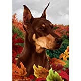 Best of Breed Fall Leaves Garden Size Flag Red Doberman Pinscher Review