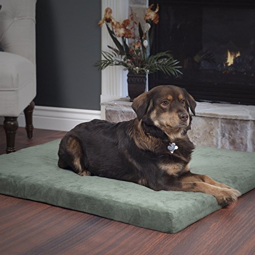 Jumbo 35 x 44 x 3 inches Orthopedic Foam Pet Bed with Washable Cover