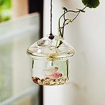 Home Decor Irregular Fish Tank Glass Hanging Planters Air Plant Terrariums Flower Pots/Water Planters Vase Indoor Outdoor