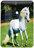 3dRose LLC lsp_101022_1 Photo Of Beautiful Arabian White Horse Single Toggle Switch