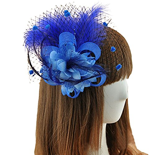 Coolr Fascinators Hair Clip Headband Feather Flower Veil Wedding Headwear Bridal 1920s Headpiece