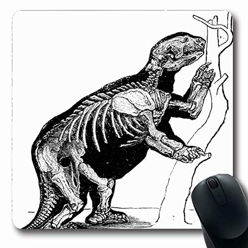Ahawoso Mousepad for Computer Notebook Wild Skeleton Mylodon Robustus Vintage Engraved Art Natural Extinct Species Ancient Antique Design Oblong Shape 7.9 x 9.5 Inches Non-Slip Gaming Mouse - Engraving 1880 Antique