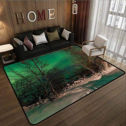 Large Area Rug,Northern Lights,Easy Clean Rugs,4'11