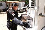 RAPICCA Animal Handling Gloves Bite Proof Kevlar