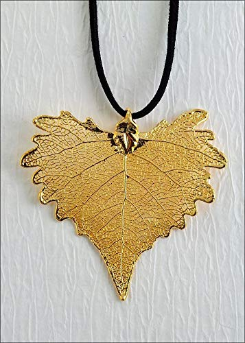 Gold Cottonwood Necklace with 18