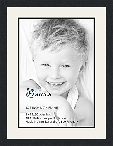 ArtToFrames Collage Photo Frame Double Mat with 1 - 14x20...