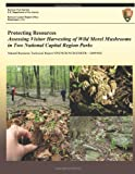Protecting Resources, National Park Service, 1492947776